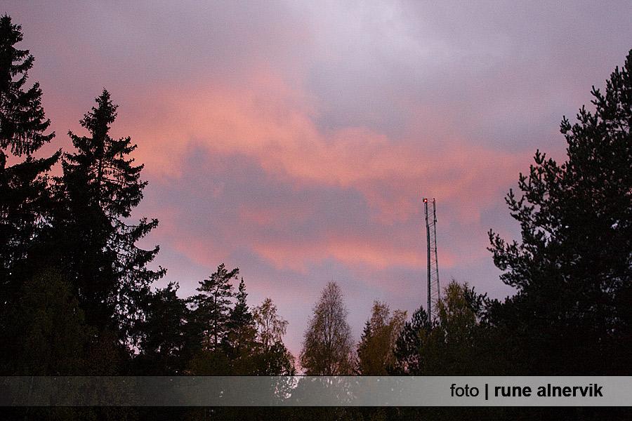 Röd himmel över skogen i Södra Grästorp