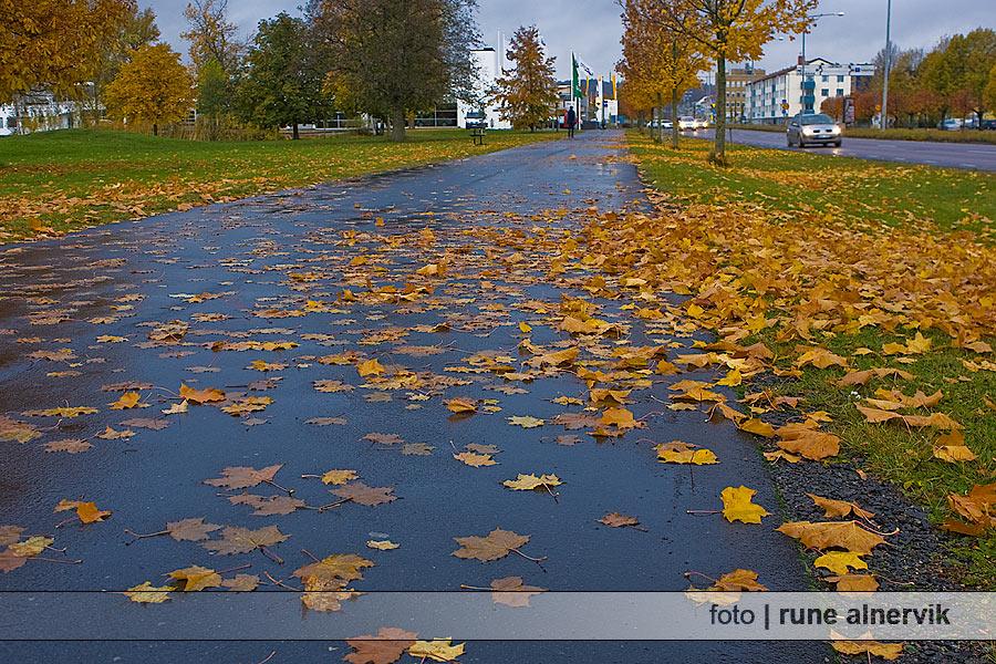 Knektaparken vid Rocksjön.