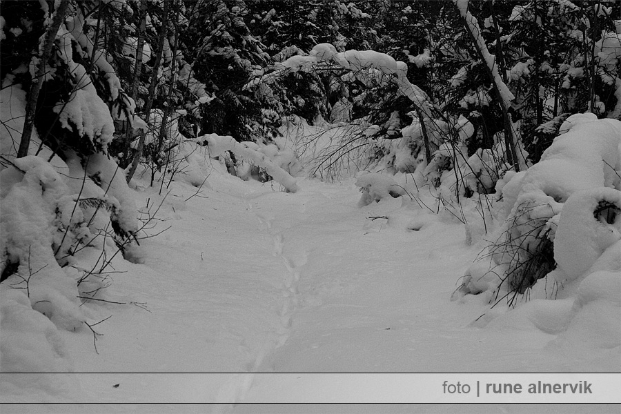 Mycket snö, fler hinder