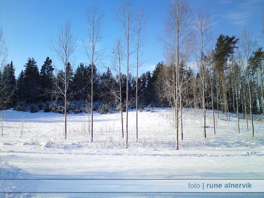 Vinterlandskap Södra Grästorp