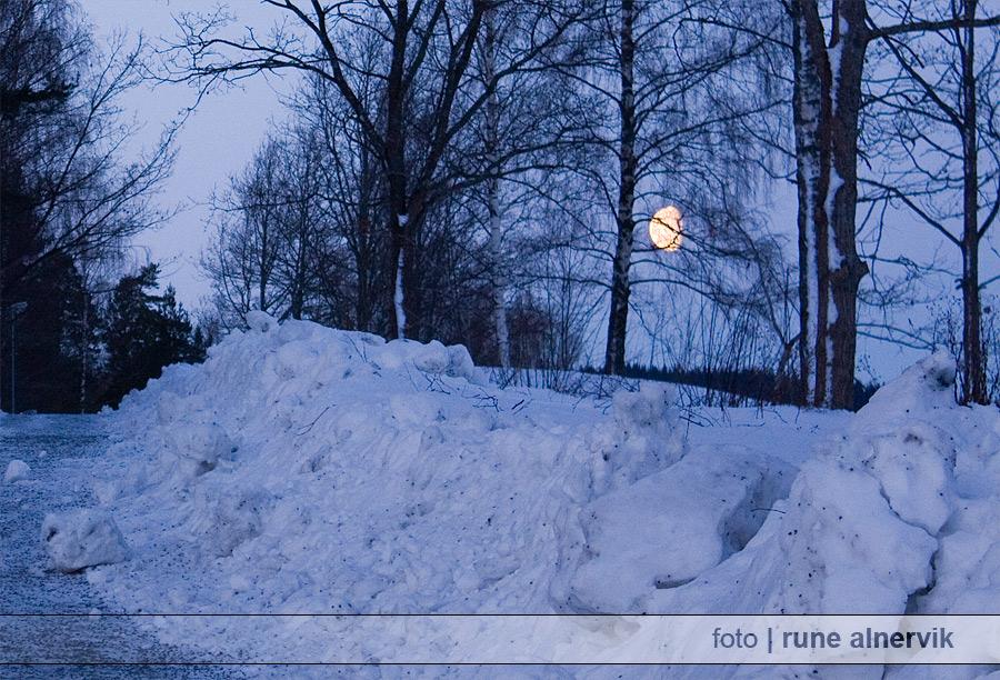 Morgonmåne