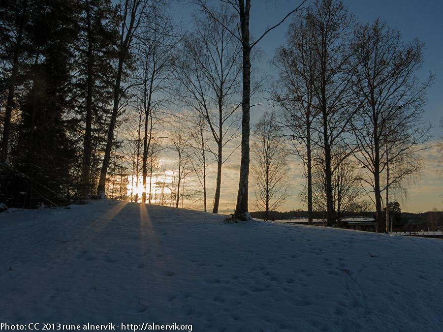Sunset walking home.